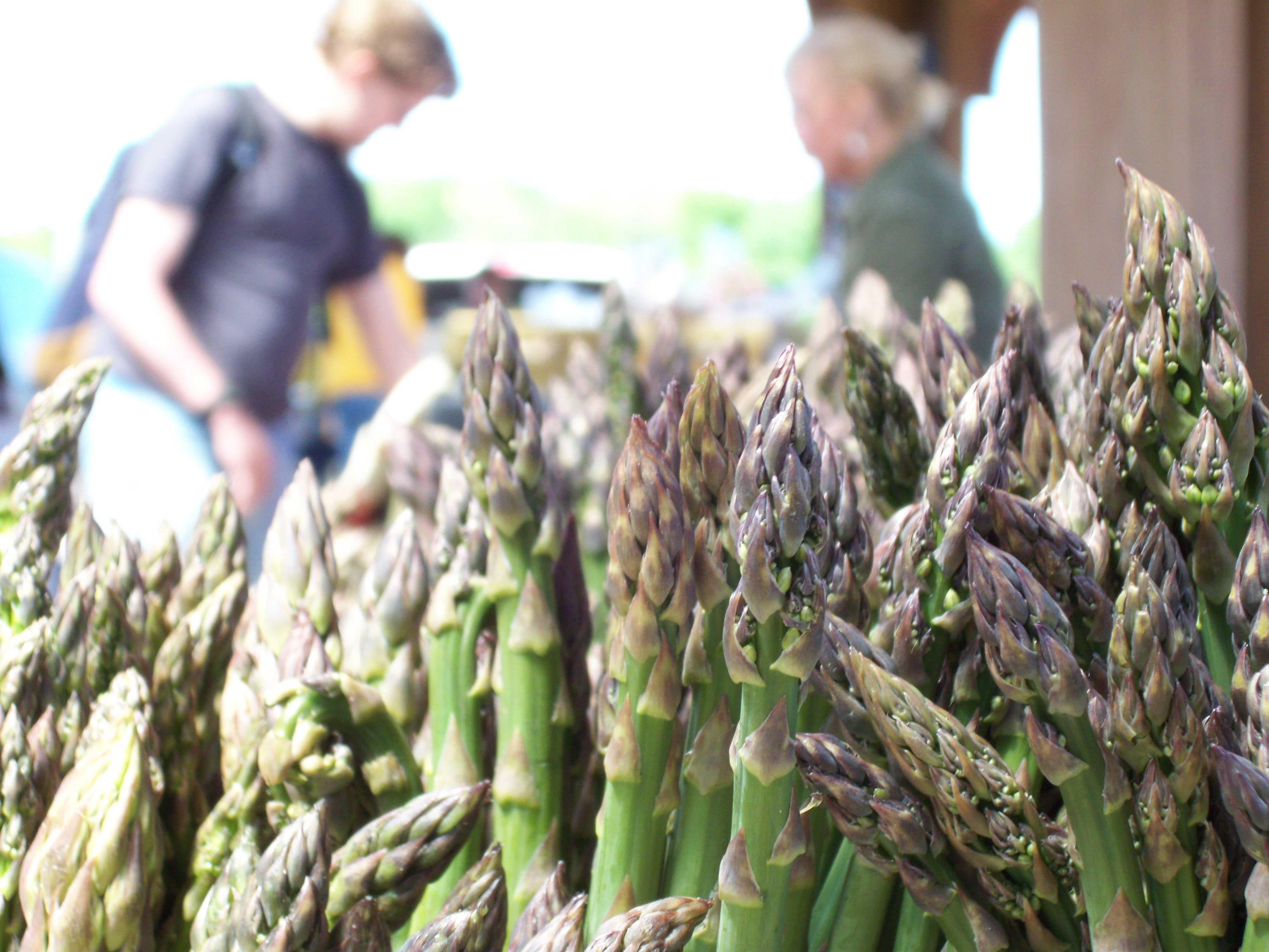 This is a picture of asparagus.